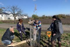 MY-TREES-DONATE-volunteering-sazeni-00029