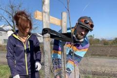 MY-TREES-DONATE-volunteering-sazeni-00031