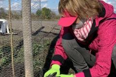 MY-TREES-DONATE-volunteering-sazeni-00038
