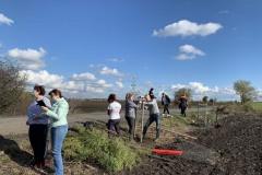 MY-TREES-DONATE-volunteering-sazeni-00039